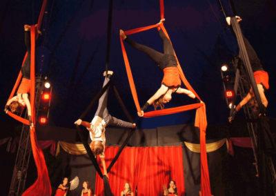 Der Zirkus kommt