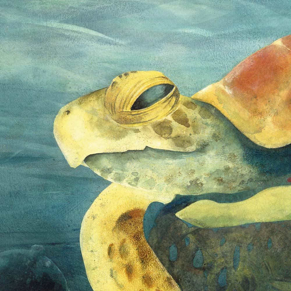 Schildkröte_FERTIG-Illustration-Antikythera_Illustrationen_Acrylbild_SchildkröteSusanne-Brem